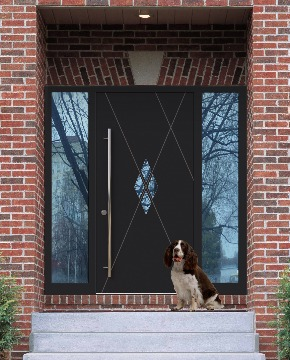 Современная входная дверь в частный дом изображение