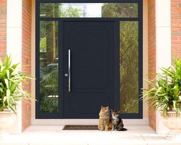 Алюминиевая дверь Calida - дверь, которую можно оставить в наследство!